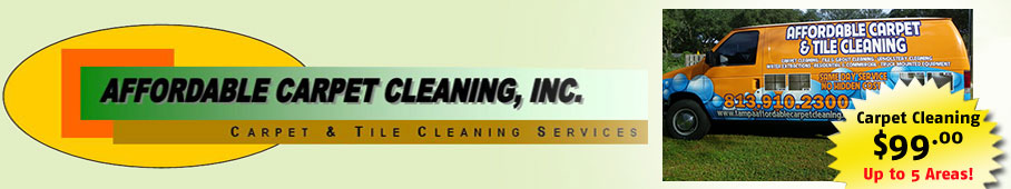 Carpet Cleaning Tampa - Logo