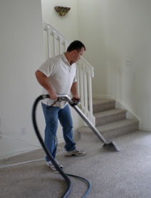 Tampa Affordable Carpet Cleaning
